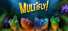 Did you know that there are slot machines in the jungle? In our brand new game Multifly, chameleons have their eyes set on tasty fireflies – the more they eat, the more you win! This machine comes buzzing with ways to multifly your winnings.