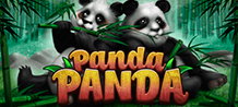 <div>What is better than a panda? Well, the answer is quite obvious - two pandas! <br/>