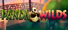 <div>Come have fun with this bamboo fan panda while earning a lot of money! <br/>