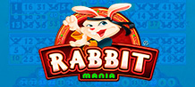 Come and meet this ninja rabbit! Improve your martial skills, and access many fun bonuses! In this game you have 4 cartons of 15 numbers. In addition, you have 10 extra balls to increase your winnings!